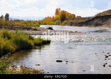 The Gros Ventre (ˈgrō-ˌvänt) River flows past grassy shore on bright autumn day. Wyoming, USA - Stock Photo