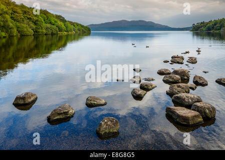 Lough Gill from Hazlewood Forest Recreation area in the early evening, Sligo, County Sligo, Republic of Ireland - Stock Photo