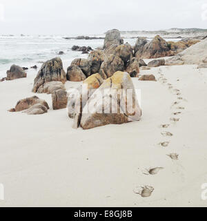 Footprints in sand on beach - Stock Photo
