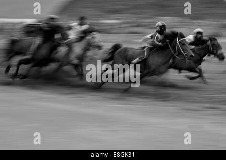 Indonesia, West Nusa Tenggara, Kabupaten Lombok Tengah, Kuta, Traditional Lombok horse race - Stock Photo