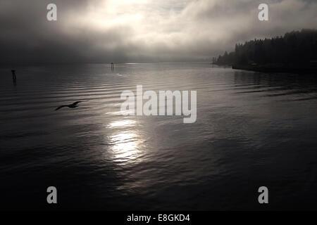 USA, Washington State, Kitsap County, Bainbridge Island, Salish Sea. Bainbridge Island, Peaceful waters of the Puget - Stock Photo