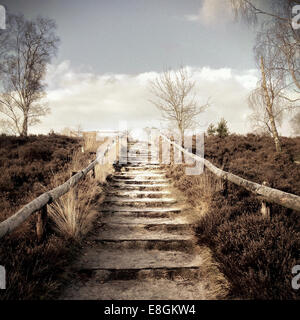 Outdoor steps leading to top of hill - Stock Photo