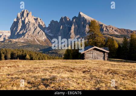 Alpe di Siusi mountain pasture, Sassolungo Mountains, Sassopiatto Mountain, Alto Adige, Dolomites, Italy - Stock Photo