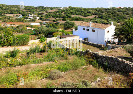Traditional farming scene showing farmhouse and small holding fields, Menorca, Balearic Islands, Spain - Stock Photo