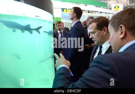 Moscow, Russia. 8th Oct, 2014. Russia's prime minister Dmitry Medvedev (2nd R) views the 16th Agricultural Exhibition - Stock Photo