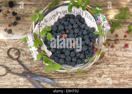 seek  and you shall find, blackberries in paper lined basket against rustic wood and vintage scissors - Stock Photo