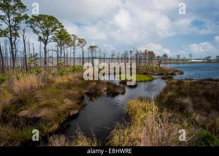 Gator Lake with Little Lagoon in the left background in Bon Secour National Wildlife Refuge, Alabama gulf coast, - Stock Photo