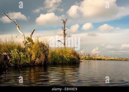 A scenic view  from a kayak in Middle Lake in Gulf State Park, Gulf Shores, Alabama, USA,directly adjacent to the - Stock Photo
