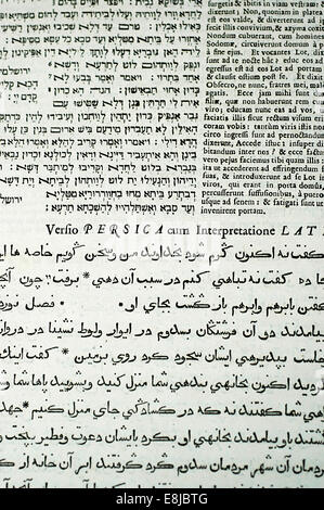 Bible in Hebrew, Latin and Arabic - Stock Photo