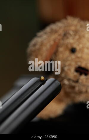 A small plush dog is faced with the muzzle of a gun. - Stock Photo