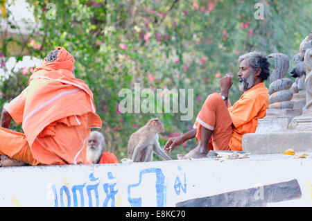 Sadhus in safron robes sat with monkey under a great banyan tree, with Hindu deities arrayed for devotees - Stock Photo
