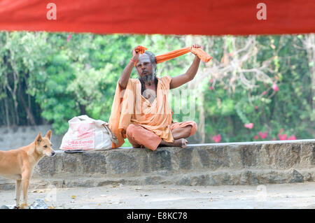 Sadhu in safron robes, preparing his & turban sat with dog under a great banyan tree on the pradacshina street around - Stock Photo