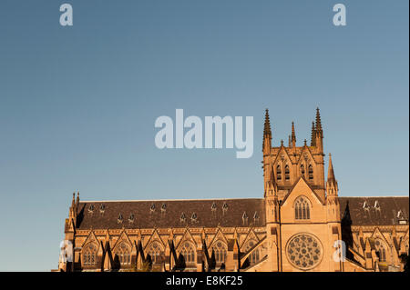 Saint Marys Cathedral in Sydney in golden light - Stock Photo