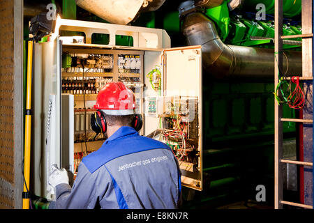 Technician looking for faults, switch box of a gas engine, Landfrischmolkerei dairy, Wels, Upper Austria, Austria - Stock Photo