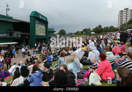 Spectators on Murray Mount at the Wimbledon Championships 2014, - Stock Photo