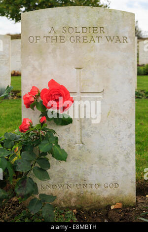 Red rose and headstone on a grave of unknown Commonwealth soldier in Cabaret Rouge British cemetery for First World - Stock Photo