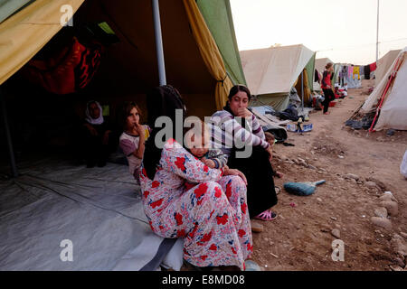 Yazidi women with their children at a refugee camp for displaced people from the minority Yazidi sect which were - Stock Photo