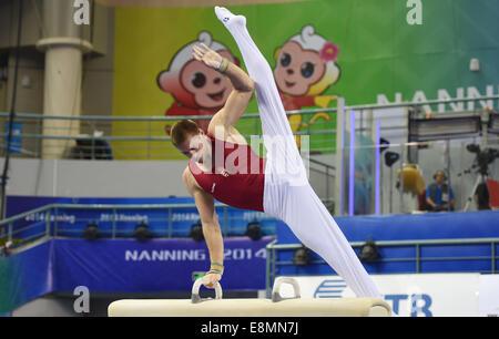Nanning, China's Guangxi Zhuang Autonomous Region. 11th Oct, 2014. Hungarian gymnast Berki Krisztian performs on - Stock Photo