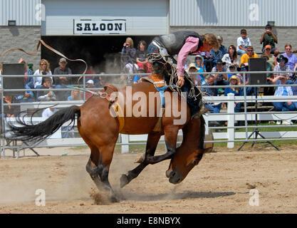 Rodeo bareback Riding - Stock Photo