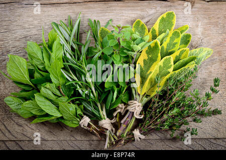 Freshly harvested herbs, bunch of fresh herbs over wooden background. - Stock Photo
