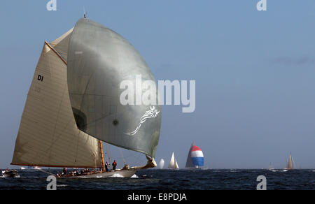 Classic yacht Mariska with gennaker - Stock Photo