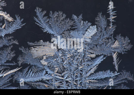 Frost traceries growing on a window. - Stock Photo