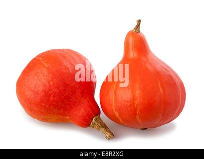 Red kuri squashes isolated on white background - Stock Photo