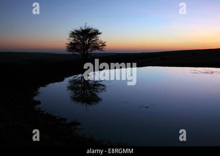 Dew pond on the South Downs at dusk. - Stock Photo