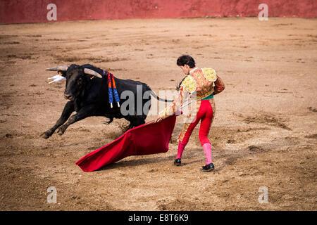 Bullfighting, El Barco de Ávila, Ávila Province, Spain - Stock Photo