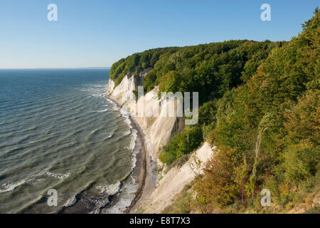 Baltic Sea, chalk cliffs and beech forest (Fagus sylvatica), Jasmund National Park, Rügen, Mecklenburg-Vorpommern, - Stock Photo