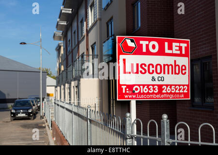 To let sign on new build houses, Newport, Wales, UK - Stock Photo