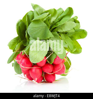 bunch of fresh radish over white background - Stock Photo