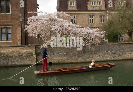 People out punting on the river Cam in Cambridge on a sunny spring day. March 17, 2014. - Stock Photo