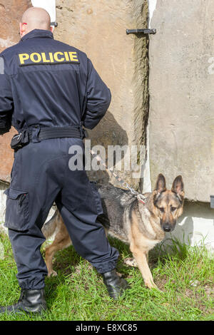 Police with dog, a German shepherd searches for explosives, control objects,  Czech police - Stock Photo
