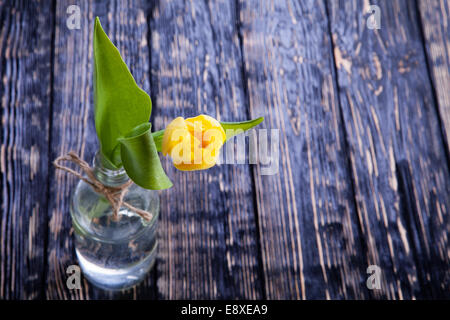 single yellow tulip in a retro bottle on a wooden background - Stock Photo