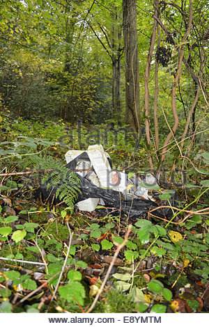 Rubbish dumped in woodland in the Shropshire countryside. - Stock Photo