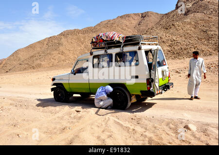 Bedouin Arab checking tyres on off road track in south Sinai desert with 4 wheel drive car, Egypt - Stock Photo