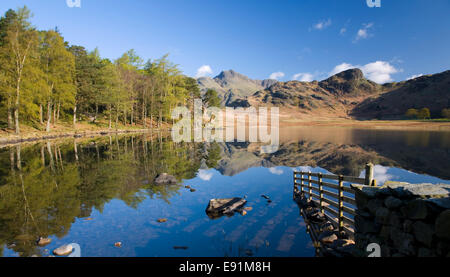 Lake District National Park, Cumbria, England. View across tranquil Blea Tarn to the Langdale Pikes.