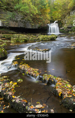 Autumn at Cauldron Falls in the village of West Burton, Yorkshire Dales National Park, Yorkshire, England, UK - Stock Photo
