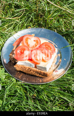 Homemade cheese and tomato sandwich picnic on a metal plate at Poppit Sands,West Wales - Stock Photo