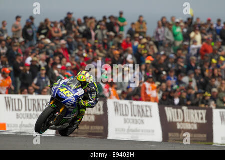 Phillip Island, Victoria, Australia. Sunday, 19 October, 2014. Valentino Rossi on his way to a race win at the Tissot - Stock Photo