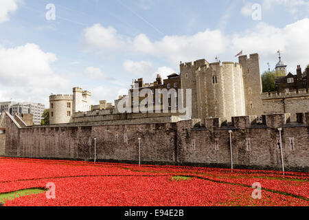 Blood Swept Lands and Seas of Red, ceramic poppy installation at the Tower of London, England, UK - Stock Photo