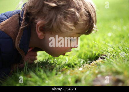 little boy wearing a coat and laying on the grass - Stock Photo