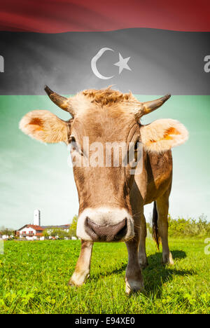 Cow with flag on background series - Libya - Stock Photo
