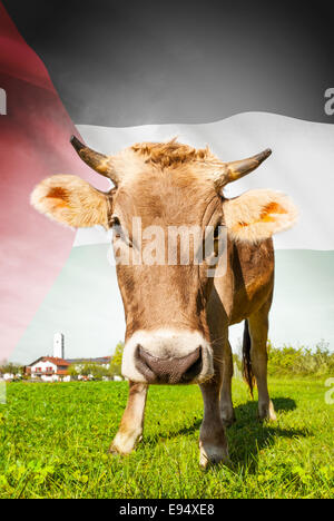 Cow with flag on background series - Palestine - Stock Photo