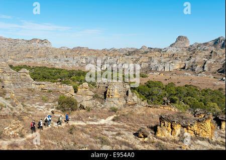 Hikers on trail through rocky landscape, erosion landscape, Isalo National Park, near Ranohira, Madagascar - Stock Photo