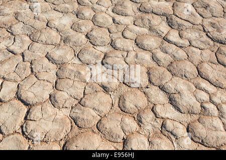 Dried sandy ground, Dead Pan, Sossusvlei, Namib Desert, Namibia - Stock Photo