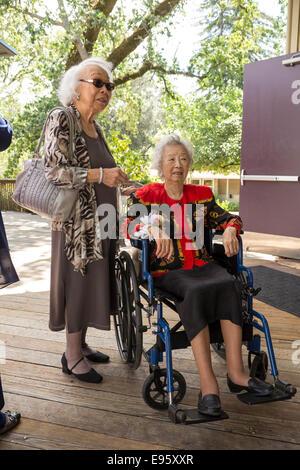 elderly women, wedding guests, wedding, Marin Art and Garden Center, Ross, Marin County, California, United States - Stock Photo