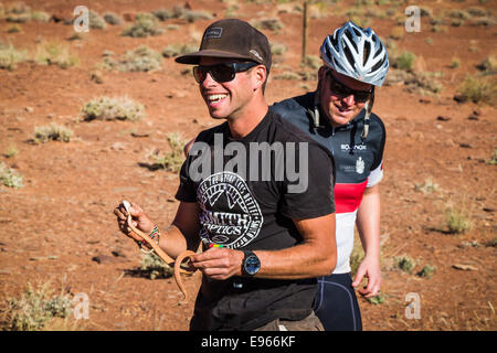Mountain bike guide Wes Shirey catching a rattlesnake on the White Rim trail, Canyonlands National Park, Moab, Utah. - Stock Photo