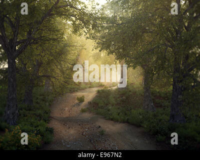 Sunshine in a mysty forest - Stock Photo